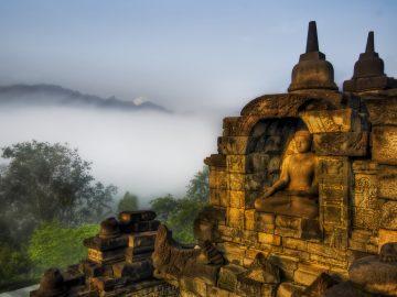 Buddha-in-the-Jungle-Highlands